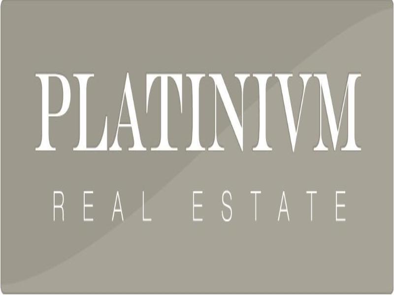 Image de l'agence PLATINIUM Real Estate